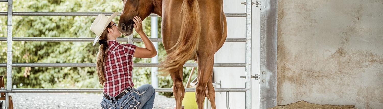 Pferdekuss-im-Roundpen