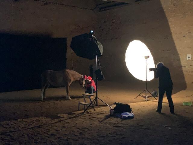 weihnachts-fotoshooting_pony_reitanlage-kerpen