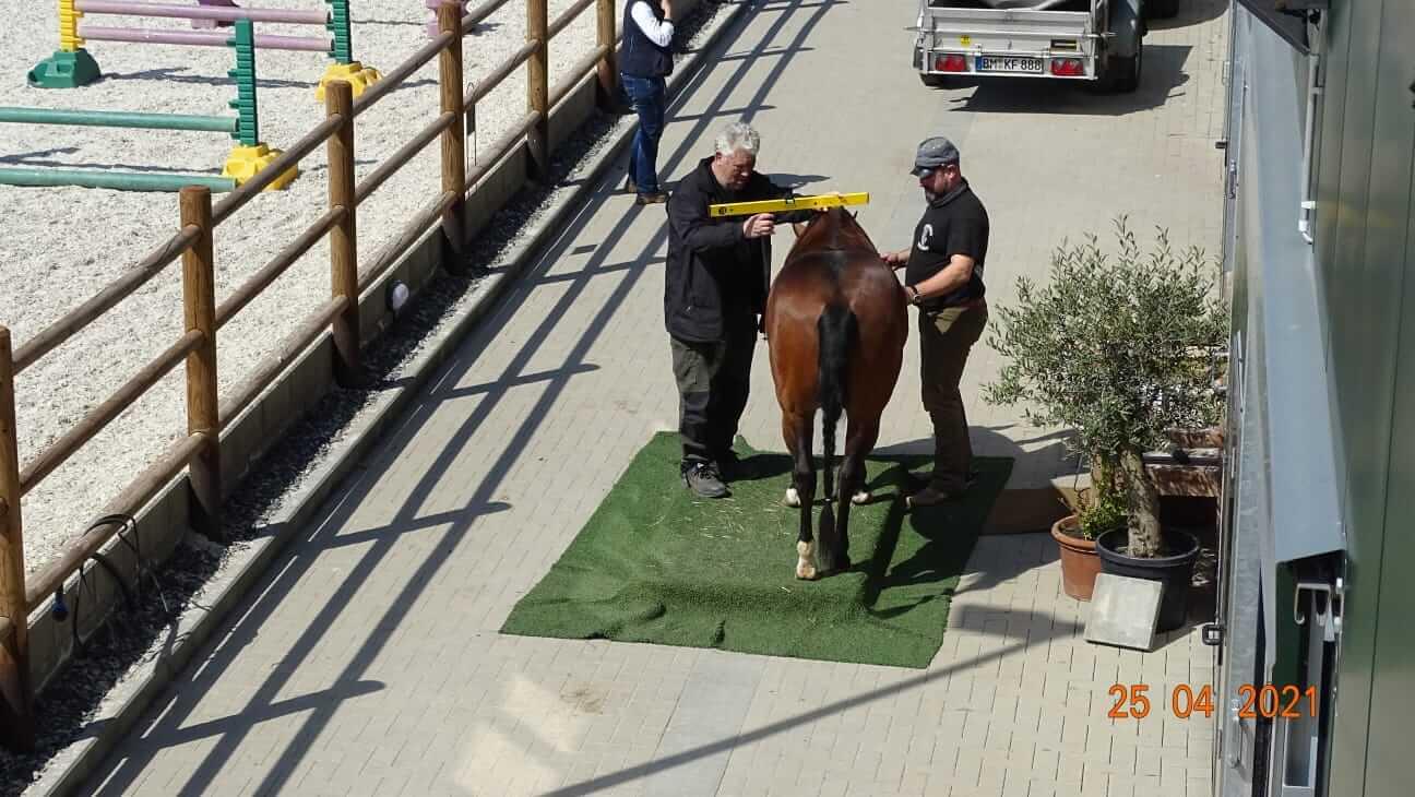 pferdewaage-in-kerpen